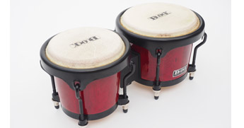 musical instrument bongos congas hire rental